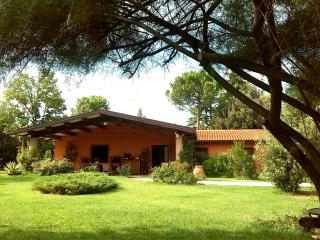 A country villa between hills, art cities and the sea - Faenza vacation rentals