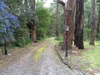 Wattle Tree Creek Cottages Hope Cottage - Gembrook vacation rentals