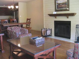 Simba Run 2br/2ba - Vail vacation rentals