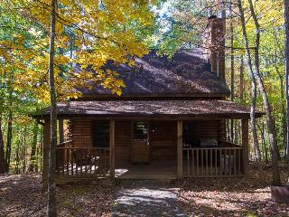 Menge's Cabin - Sevierville vacation rentals