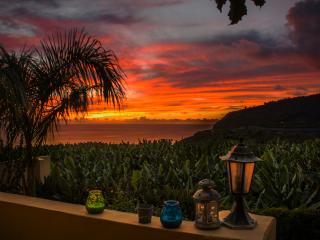Comfortable Condo with Garden and Toaster - Tazacorte vacation rentals