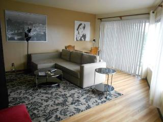 Greenlake Top Floor Beatiful Seattle Area great views and deck - Seattle vacation rentals