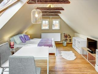 ABC Suites - Luxury studio in Old Town - Czech Republic vacation rentals