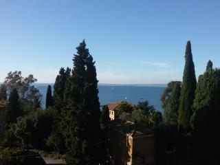 Unique 3rd floor flat front lake with amazing view - Garda vacation rentals