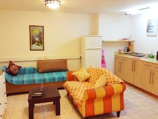 One-bedroom apartment near SHIBA Mendess 6 - Ramat Gan vacation rentals