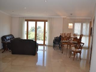 LUXURY 3 Bedroom in LUXURY building. - Israel vacation rentals
