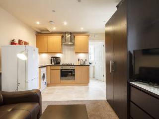 Cozy Preston Studio rental with Internet Access - Preston vacation rentals
