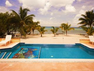 Beachfront Villa on Secluded Beach. Private Pool. Cook Service Available! - Cozumel vacation rentals