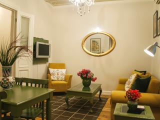 Authentic Beyoglu Apartment close to Taksim Square - Istanbul vacation rentals