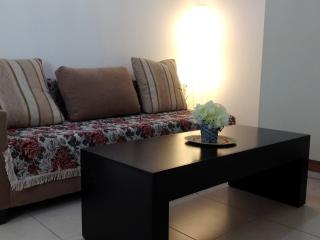 Cozy apartment near SHIBA Mendes 49 - Ramat Gan vacation rentals