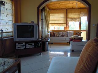 House in the historical Marathon - Attica vacation rentals