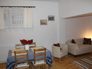 120 Çukurcuma Flat 2 Bedrooms - Istanbul vacation rentals