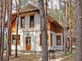 Getaway cabin - Kiev vacation rentals