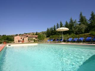 Splendid Villa by Olive Groves and Vinyards at Fontocchio on Cortona - Terontola vacation rentals