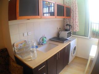 Cozy one-bedroom apart Hertsel 72/3 - Israel vacation rentals