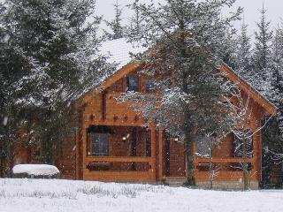 Log Cabin in Ballyconnell, Co. Cavan, Ireland - County Roscommon vacation rentals