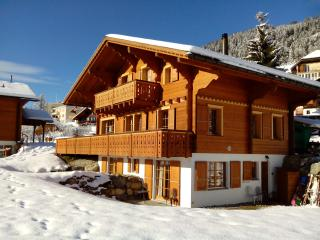 Luxury Traditional Swiss Chalet, Close to Lifts - Leysin vacation rentals