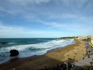 BEAUTIFUL HOLIDAY FLAT, NEAR BEACHES, OLD TOWN - Biarritz vacation rentals