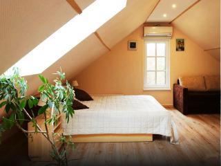 1 bedroom Condo with Internet Access in Trakai - Trakai vacation rentals