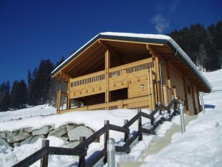 Haus Kammern Luxury Chalet for Summer Relaxing or - Mittersill vacation rentals