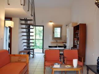 Apartment near the sea in Nikiti - Halkidiki vacation rentals
