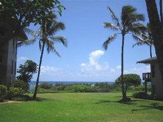 Kaha Lani Resort #114 - OCEANVIEW, King Bed, Wifi - Kapaa vacation rentals