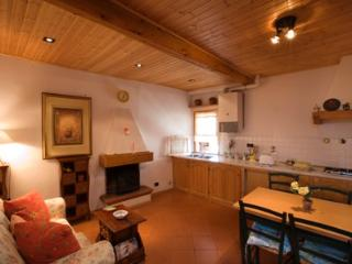 1 bedroom Townhouse with Television in Incisa in Val d'Arno - Incisa in Val d'Arno vacation rentals