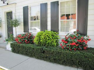 historic,downtown,fabulous kitchen,country garden - Niagara-on-the-Lake vacation rentals