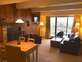 Mountain Green Unit 2-F9 - Killington Area vacation rentals