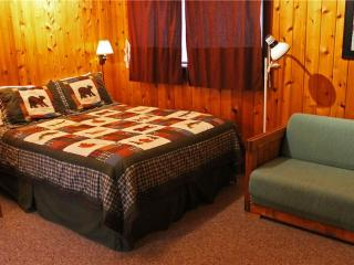 Located at Base of Powderhorn Mtn in the Western Upper Peninsula, Cozy Home in Quiet Wooded Setting with Large Living Room & Bri - Bessemer vacation rentals
