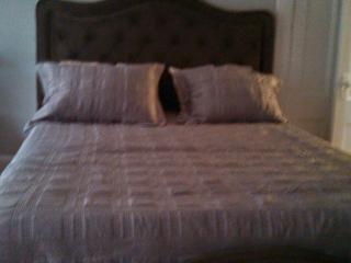 Furnished 1 Bed, Corner of Melrose & Arlington #2 - Boston vacation rentals