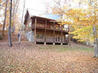 Cozy Bearadise Cabin on 300+ Ft Brasstown Creek - Brasstown vacation rentals