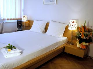 Awesome view 2 bedr. apt. downtown city - Bucharest vacation rentals