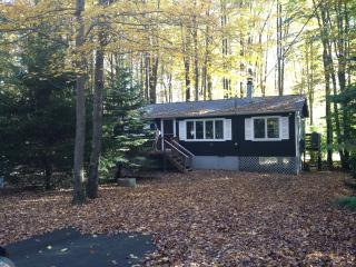 Tranquil Pocono Lake Cottage ~ Fplc/Fpit/Wifi - Pocono Lake vacation rentals