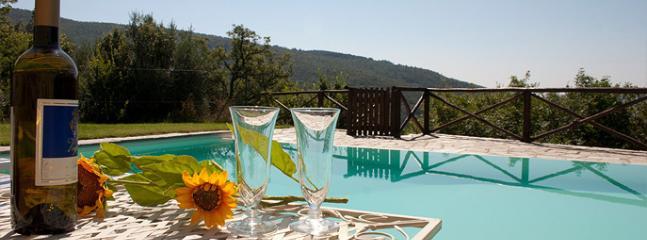 Villa Leccio: a beautiful stone farmhouse - Image 1 - Cortona - rentals