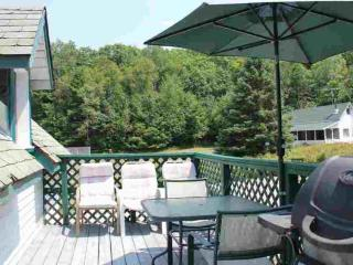Ice Palace - Clyffe House Cottage Resort - Port Sydney vacation rentals