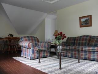 Ice Palace - Clyffe House Cottage Resort - Port Sydney vacation rentals