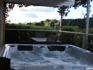 Gorgeous Villa with A/C and Hot Tub in Daylesford - Daylesford vacation rentals