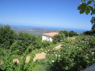 SPACIOUS APARTMENT FOR FOUR PERSONS, WITH GARDEN, - Santa Maria Navarrese vacation rentals