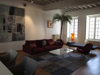 Le Pont Levis (previously Le Loft de l'Opéra) - Nantes vacation rentals