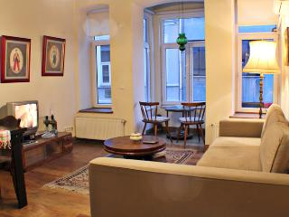 Apartment in the Heart of the City 2 - Istanbul vacation rentals