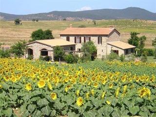 Villa in Scansano, Tuscany, Italy - Scansano vacation rentals