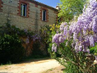 The Farmhouse gite - Millas vacation rentals
