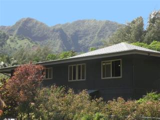 2 bedroom House with Television in Hanalei - Hanalei vacation rentals