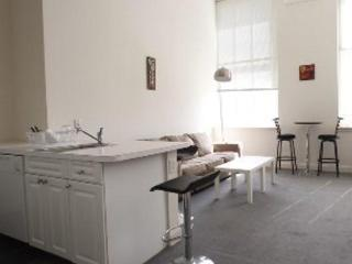 FURNISHED RITTENHOUSE 1BR LOFTSTYLE PLUS SOFABED - Philadelphia vacation rentals
