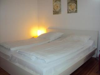 Apartment near Charité Campus Virchow-Klinikum in Berlin-Mitte,clean and cozy like at home. - Berlin vacation rentals
