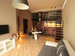 Nice Condo with Internet Access and Garage - Lodz vacation rentals