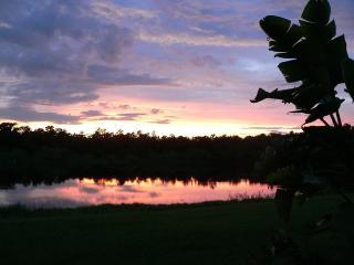 Casa Calm - Sarasota vacation rentals