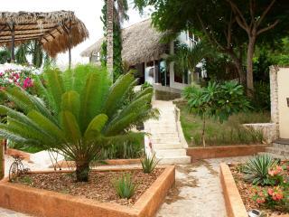 Tropical Ocean View Villa - Las Terrenas vacation rentals