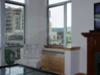 Pearl District Luxury 1BD/1BA w/ views - Portland Metro vacation rentals